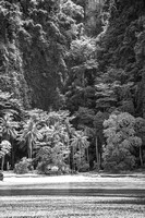 tropical island with limestone cliff Thailand black and white
