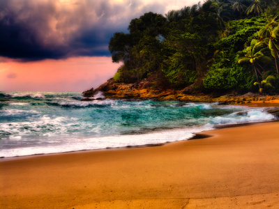 sunset green water tropical trees beach